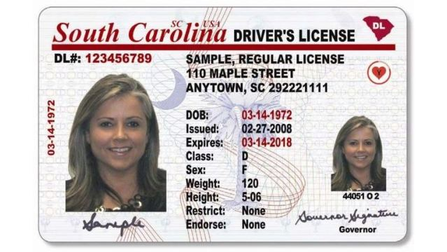 Most SC drivers can renew license online now