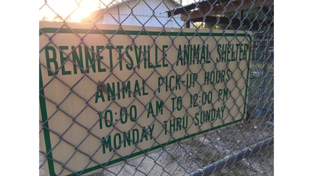 Bennettsville animal shelter closes for good