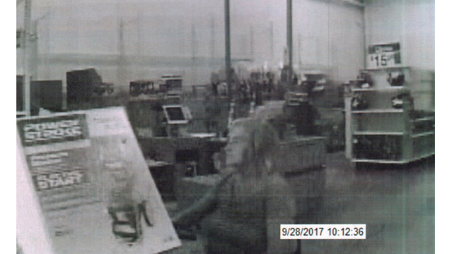 Conway police search for suspected shoplifter