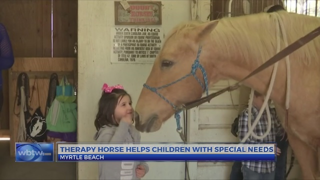 Horse therapy program for special needs children loses only horse