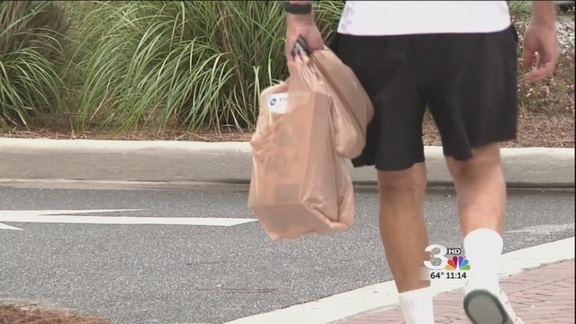 Hilton Head council votes to ban plastic bags