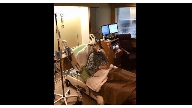 Viral Myrtle Beach 'Giraffe Mom' welcomes baby boy