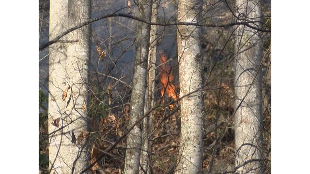 Multiple fires in Roan Mountain area; 90% contained
