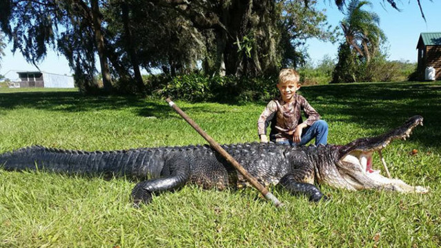 WOW! 8-Year-Old Boy Catches 11-Foot Gator in Florida