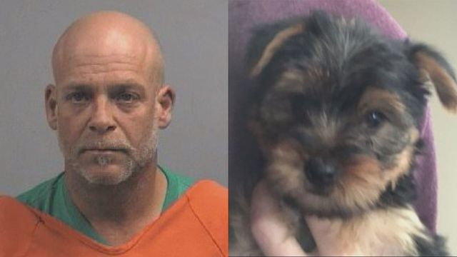 NC man charged with stealing puppy from stepdaughter, trading it for meth