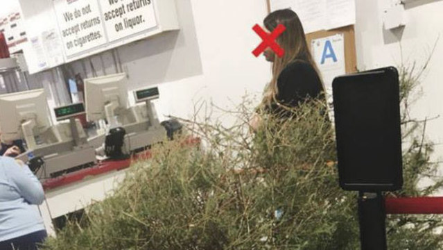 Woman Returns 'Dead' Christmas Tree to Costco for a Refund, in January