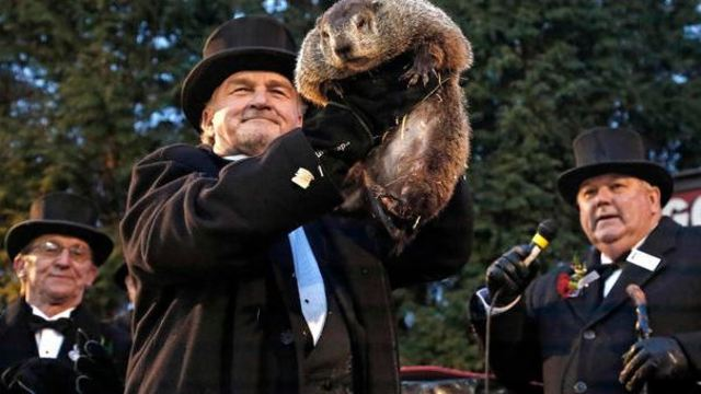 Crazy Facts About Groundhog Day You Never Knew - but Should