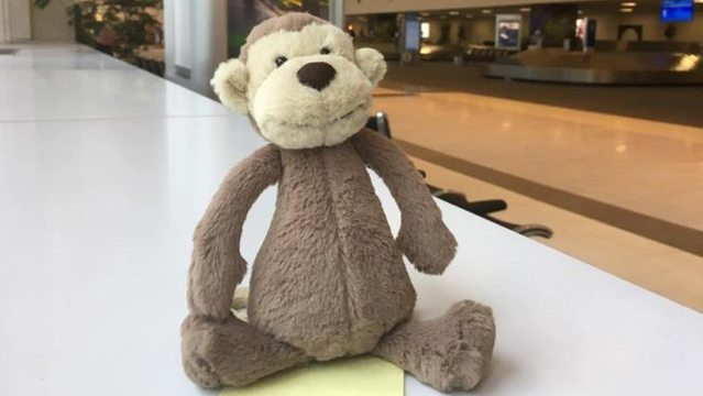 Help reunite owner with toy monkey left at a South Carolina airport