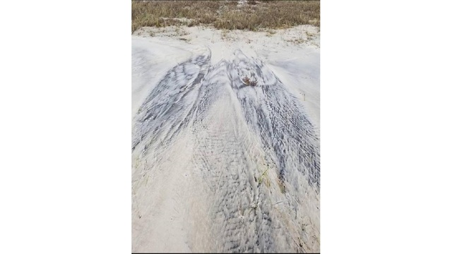 Dauphin Island's guardian angel? What do you see in this after Nate photo?