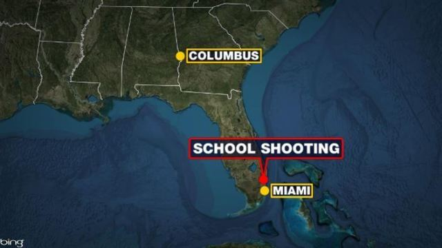 Gunman opens fire at school, kills 17