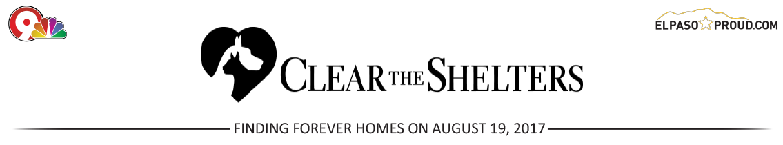 Clear The Shelters Header