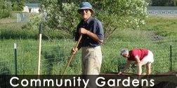 communitygardens_252_126