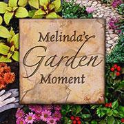 Melinda's Garden Moments