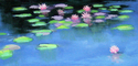 water lily, pond, floral, water, blue, sky, reflections - Impressionism Painting