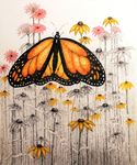 Pen & Ink, stippled, butterfly, tammie Temple, daisies, nature, monarchy butterfly, colorful drawings, Addy's drawing,  -  Drawing