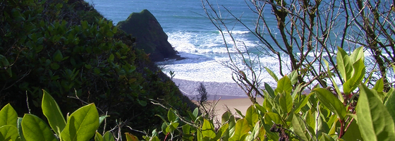 Coastalareasheader