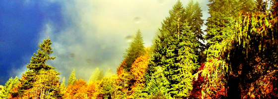 Coastrangemountainsecoheader