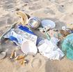 Beachdebris