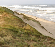 Beachslideshoworegondunes