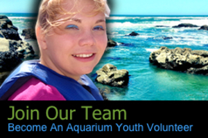 Onyouthvolunteerad