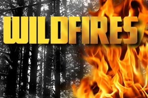 Wildfiresad