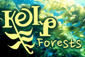 Kelpforestsad