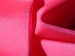 neon pink_spandex