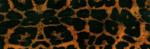 jaguar_print