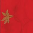 red_sonoma