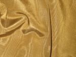 gold_bengaline