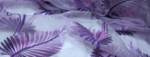 lavendar_plumage