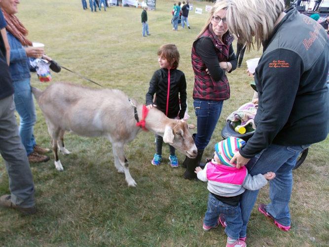 Children pet a goat at OkTupperfest in late September 2016 at Big Tupper Ski Area in Tupper Lake. (Enterprise photo — Brittany Proulx)