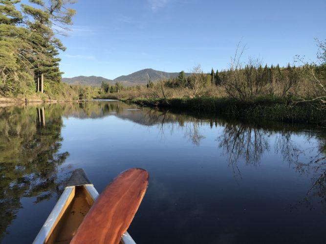 Observing wildlife along the Saranac River (Photo provided)