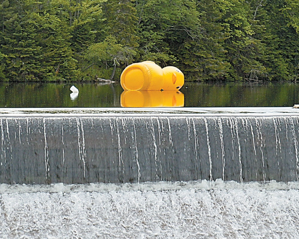 A lone, larger-than-life rubber duck floats sideways in Lake Placid's Mill Pond, reflected above the dam on Thursday — a preview of the annual Lake Placid Dam Duck Race, put on by the Rotary Club of Lake Placid. (Enterprise photo — Antonio Olivero)