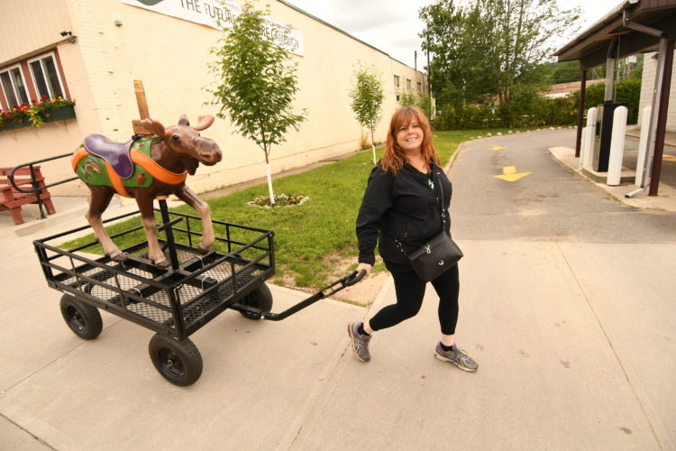 Jennifer Hunt, director of the Adirondack Carousel, wheels Beethoven the moose along Broadway in Saranac Lake to the Harrietstown Town Hall Monday afternoon. Beethoven is one of the carved wooden carousel figures that has traveled to visitors centers around the Tri-Lakes to promote the carousel and will be on display at the town hall. (Enterprise photo — Lou Reuter)