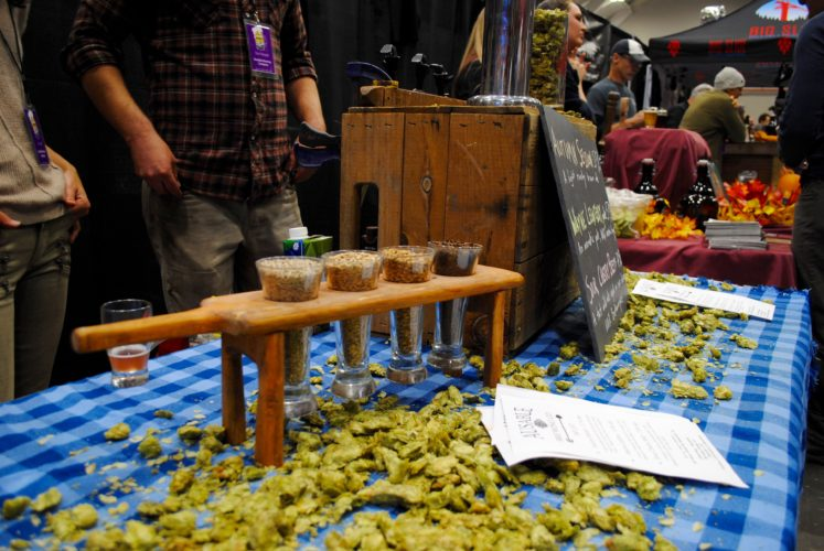 A brewer  showcases their hops and grain during the 2016 Brewfest at the Olympic Center in Lake Placid. This year's event returns Saturday. (Photo provided)