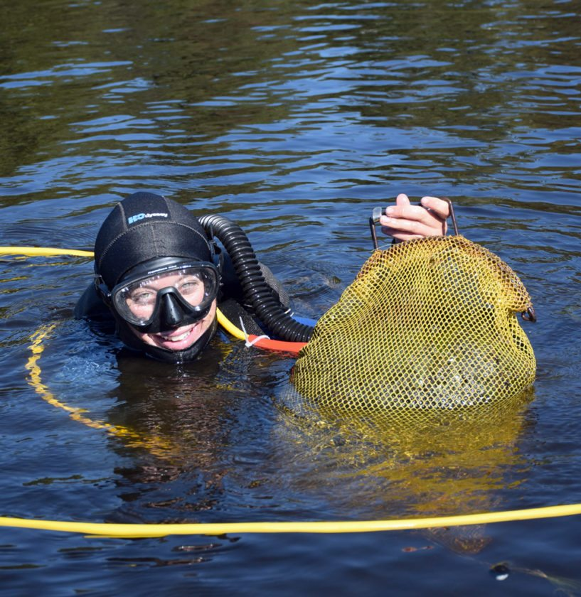 The Upper Saranac Lake Foundation is using a $100,000 grant, along with shore owner's matching funds, to harvest invasive milfoil in Fish Creek Ponds, which feed into the upper lake. Two crews of divers are currently working to hand-pick 25-pound bags in an effort to get the ponds to a much lower density of harmful milfoil. (Enterprise photo — Justin A. Levine)