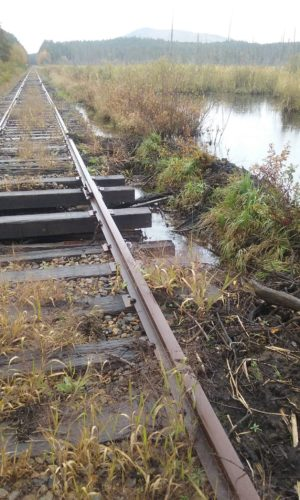 Without maintenance by the Adirondack Railway Presevation Society, the rail corridor is already starting to flood and wash away between Lake Placid and Saranac Lake, as seen Oct. 7. (Photo provided — Doug Vensel)