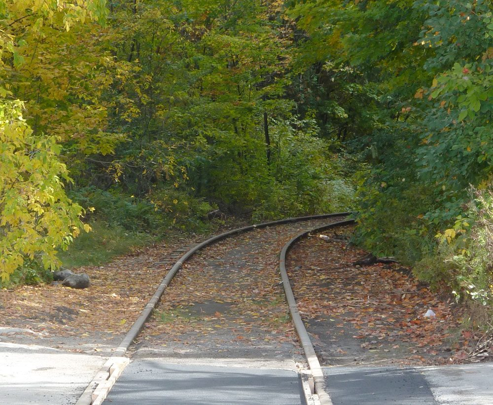 Trees overhang railroad tracks next to the crossing at Cedar Street, Saranac Lake, part of the disputed Remsen-Lake Placid Travel Corridor. (Enterprise photo — Peter Crowley)
