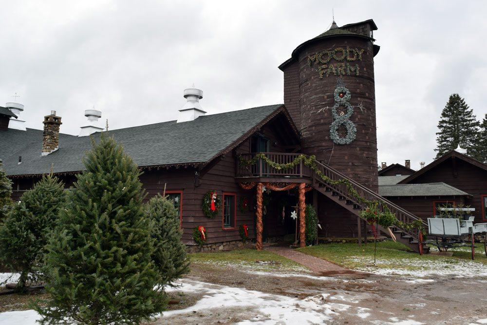 Moody Tree Farm in Gabriels (Enterprise photo — Glynis Hart)