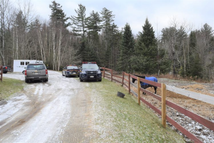 State police seized eight horses in a state of neglect from XTC Ranch in Lake Clear on Wednesday. The investigation is ongoing. (Enterprise photo — Glynis Hart)