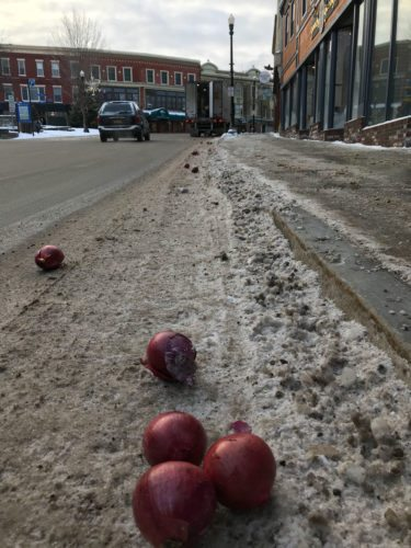 Onions roll down Broadway this morning after escaping a delivery truck. (Enterprise photo — Catherine Moore)