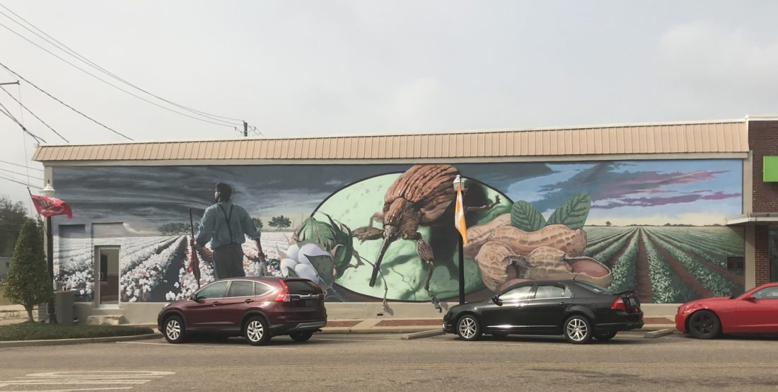 Enterprise, Alabama, has a mural of a boll weevil, an insect that devastated the dominant cotton crop and prompted farmers to diversify to other crops such as peanuts.  (Photo provided — Larry Roth)