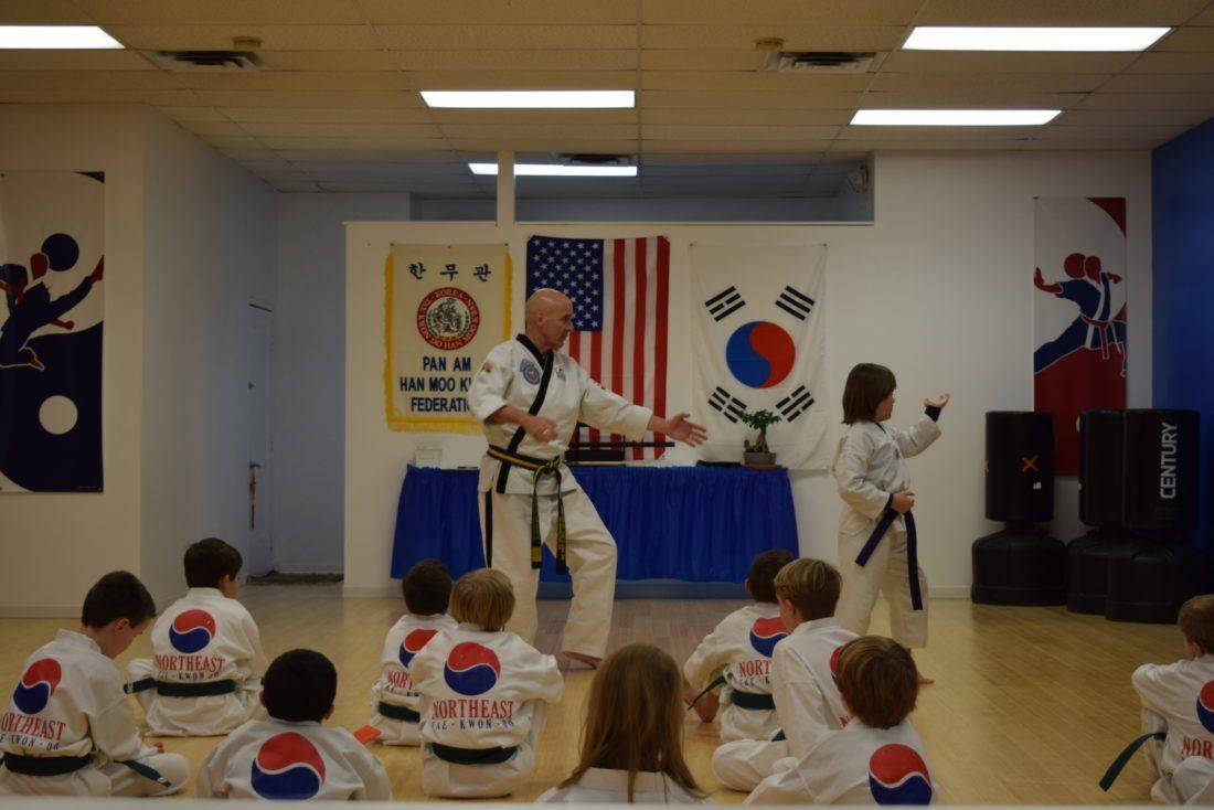 Grandmaster Jon O'Kelly and Mason, a blue belt, demonstrate a pattern for the class.  (Enterprise photo — Glynis Hart)