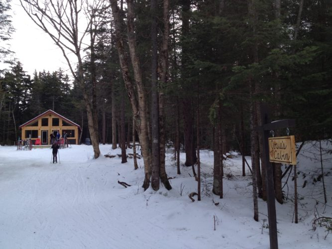 Josie's Cabin at Mount Van Hoevenberg's Cross-Country Ski Center hosts an interactive natural history series on select Saturdays. (Photo provided — Diane Chase)