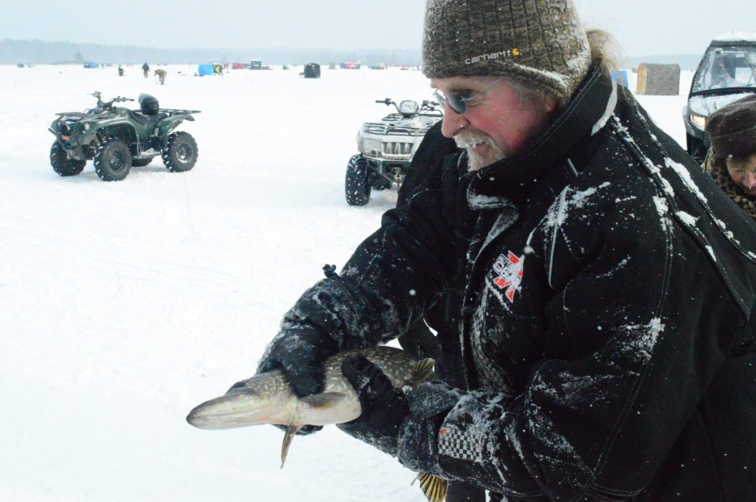Sherm LaLonde brings a pike to be revived in a water pool at the Northern Challenge Fishing Derby in Tupper Lake. He said though the water is near freezing and the fish are slippery, he does it every year to keep as many fish as possible alive and swimming in the lake. (Enterprise photo — Aaron Cerbone)
