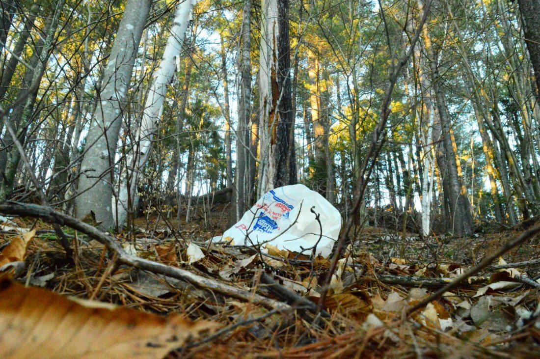 Cuomo eyes NY plastic bag ban by 2019