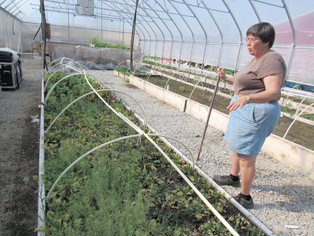Sister Rita in one of the three greenhouses at Toledo GROWs