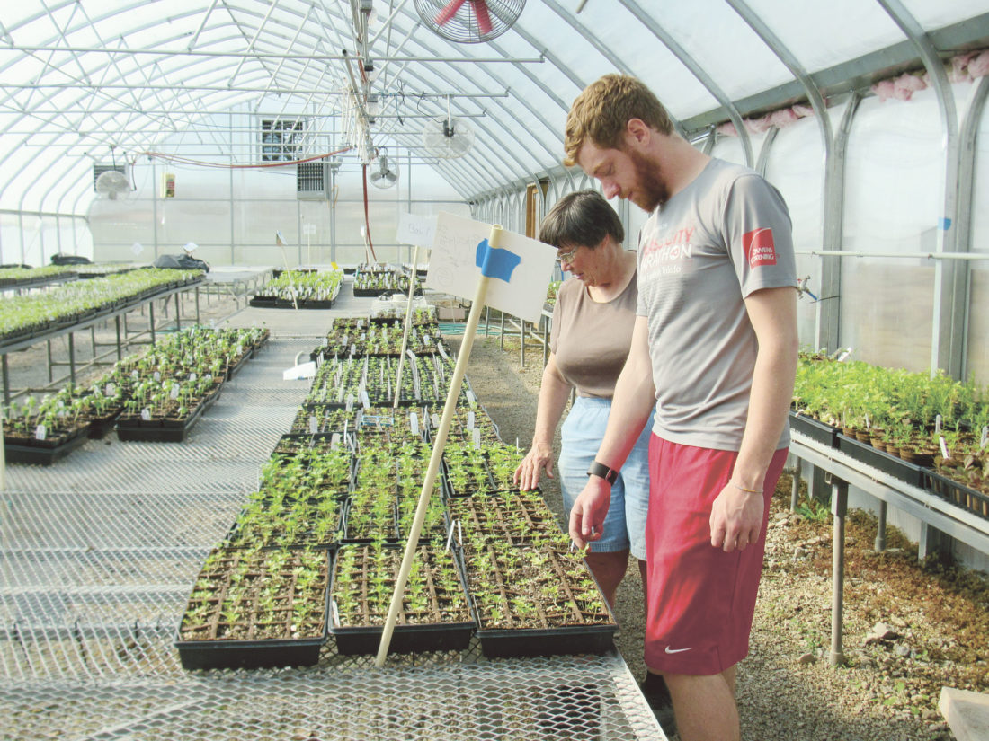 PHOTOS BY VICKI JOHNSON Sister Rita Wienken checks over new greenhouse plants with assistant farmer Aaron Lucius, a Fostoria native.