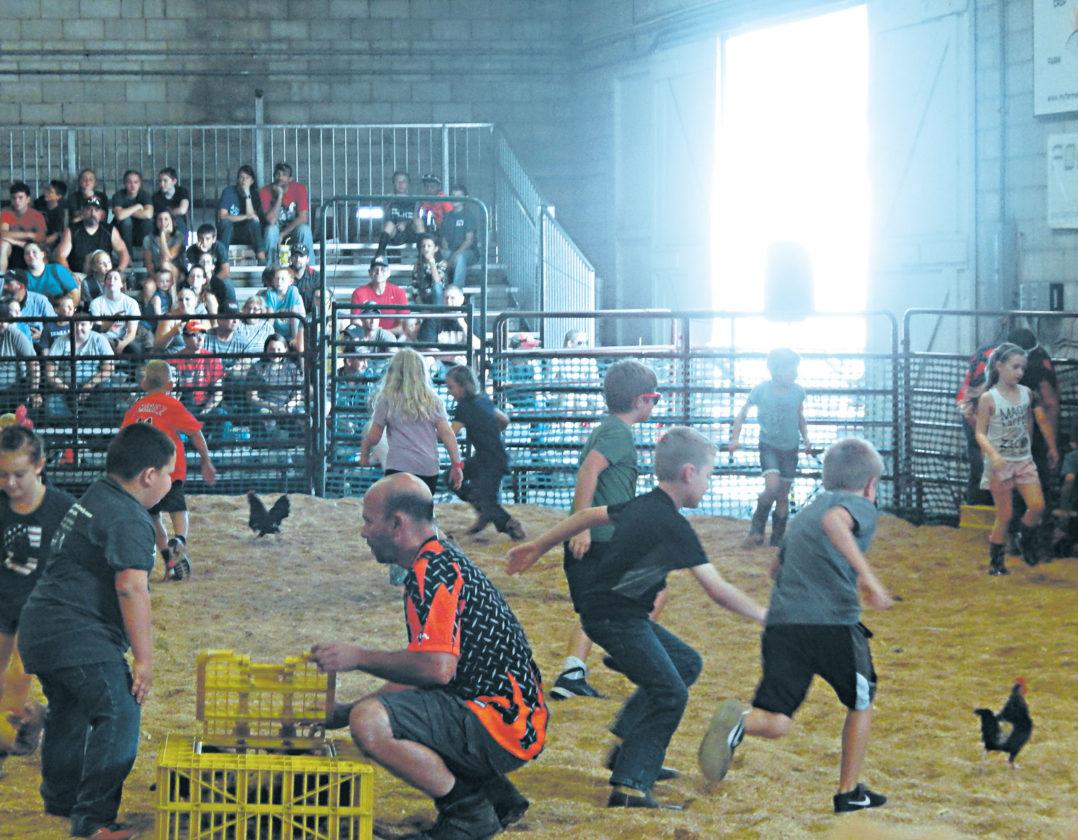 Scramble Is A Favorite At Wyandot County Fair News Sports Jobs